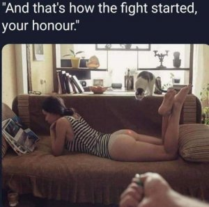 fight started.jpg