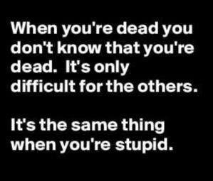 Stupid.jpeg
