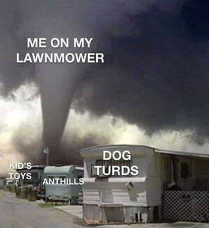 mowing the lawn.jpeg